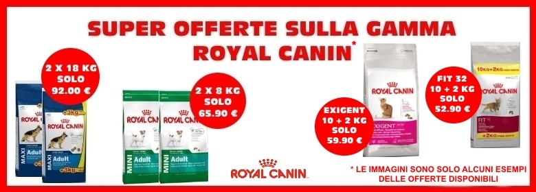 offerte royal canin.