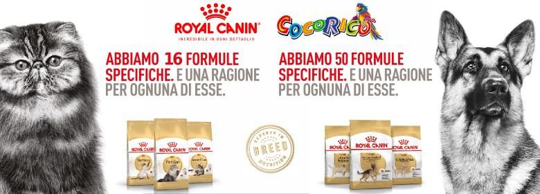 Royal canin Busta Cane