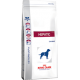 ROYAL CANIN HEPATIC DOG KG. 12