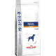 ROYAL CANIN RENAL CANE SELECT 2KG