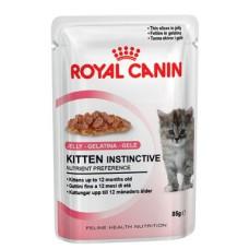 ROYAL CANIN BUSTA GR.85 KITTEN JELLY